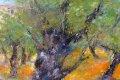 Oliven Baum